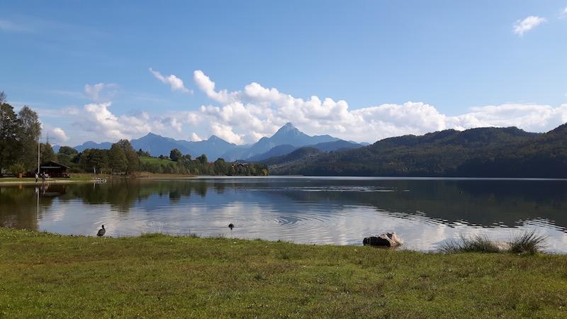 Baden:Das Freibad Weissensee ist zu Fuß in 10 min zu erreichen