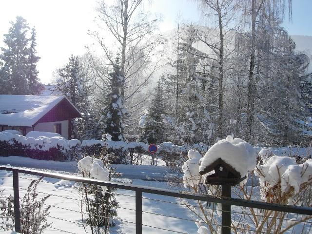Vogelfutterhaus:Bei noch so grimmiger Kälte kommen auch unsere Vögel nicht zu kurz, welche man  aus dem Wintergarten beobachten kann.