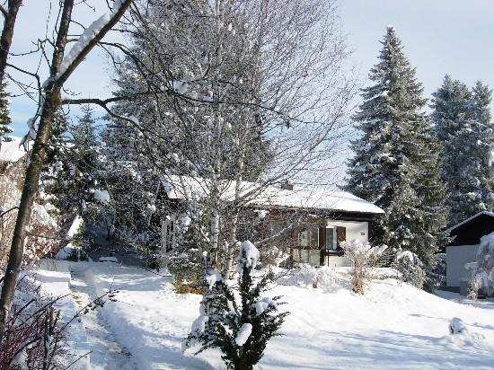 Ein Wintertraum:Auch im Winter ist es bei molliger Wärme im sonnigen Wintergarten wunderschön und erholsam.