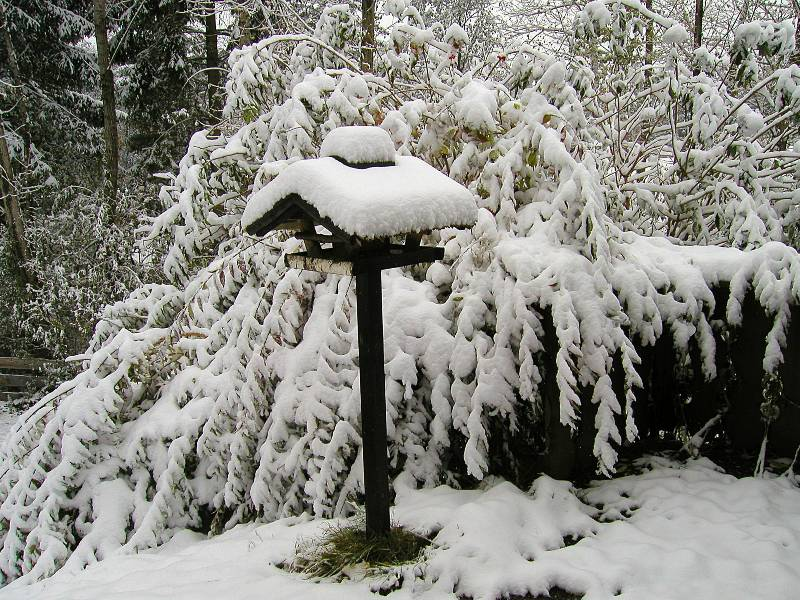 :Vogelhaus im Winter